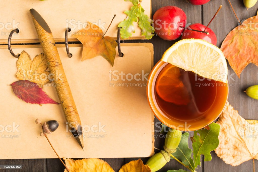 Autumn concept with open books for plan and hot drink with lemon stock photo