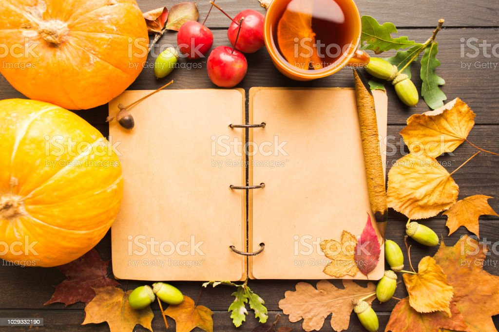 Autumn concept with open notebook, hot tea, pumpkins and dry leaves stock photo
