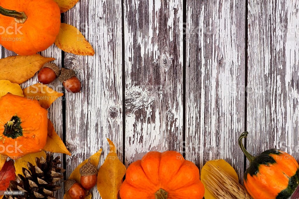 Autumn Corner Border Against A Rustic Old White Wood Background Royalty Free Stock Photo