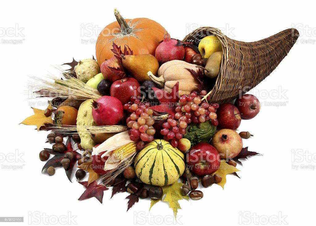 Autumn cornucopia royalty-free stock photo