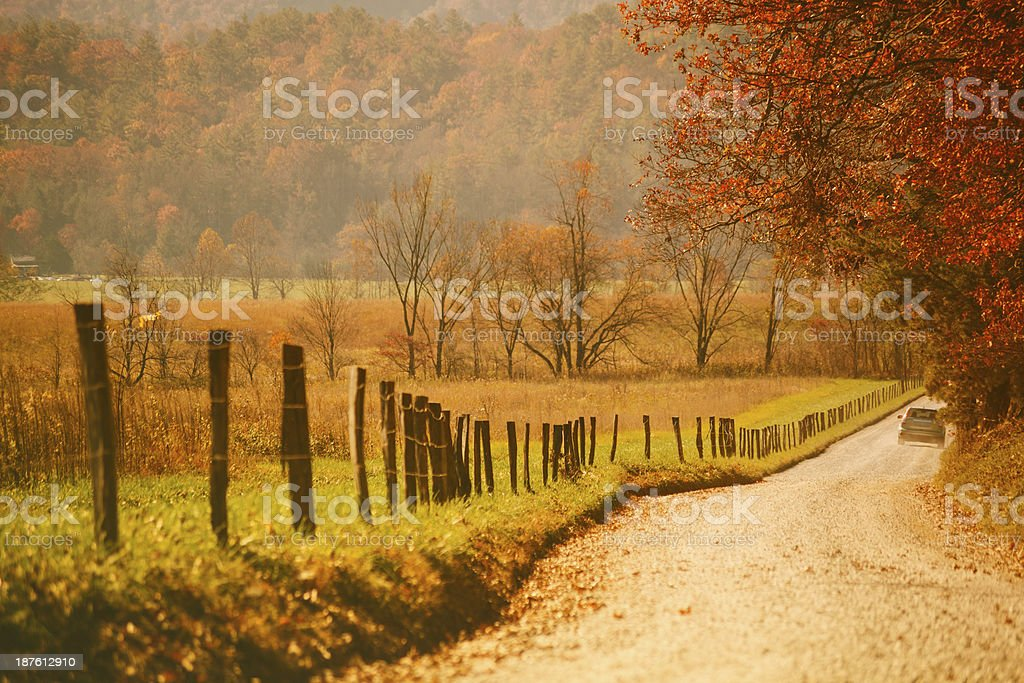 Autumn Country Road in the Forest stock photo