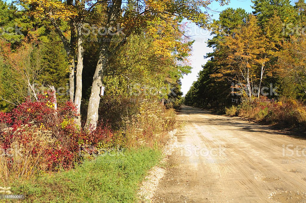 Autumn Country Road stock photo