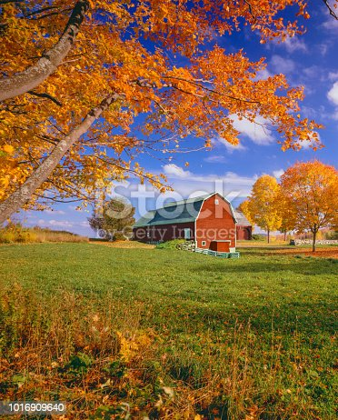 New England  autumn; charming autumn country side; rustic barn with autumn color