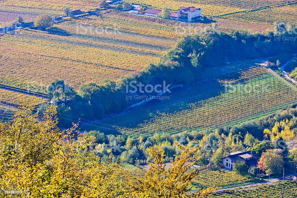 Autumn Countryside, Italy royalty-free stock photo