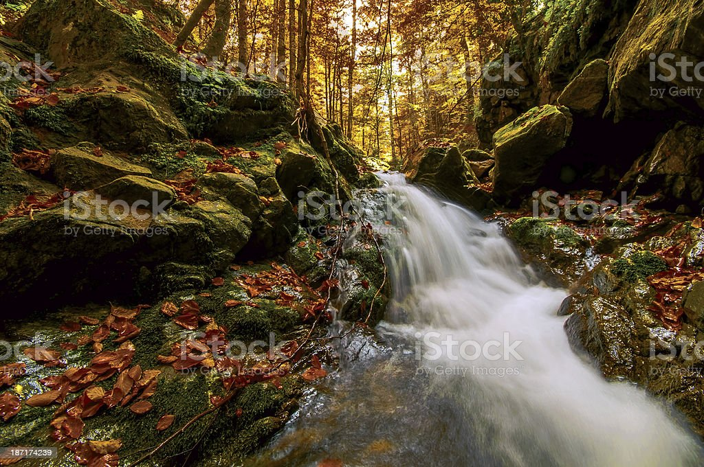 Autumn Creek royalty-free stock photo