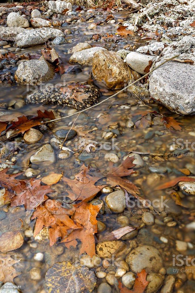 Autumn Creek stock photo