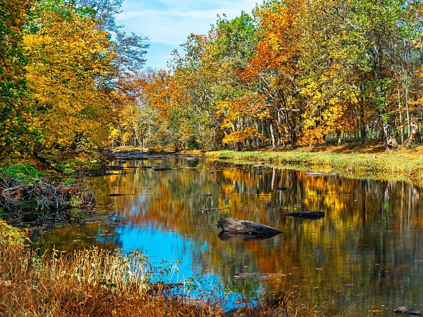 Autumn Creek Reflections stock photo