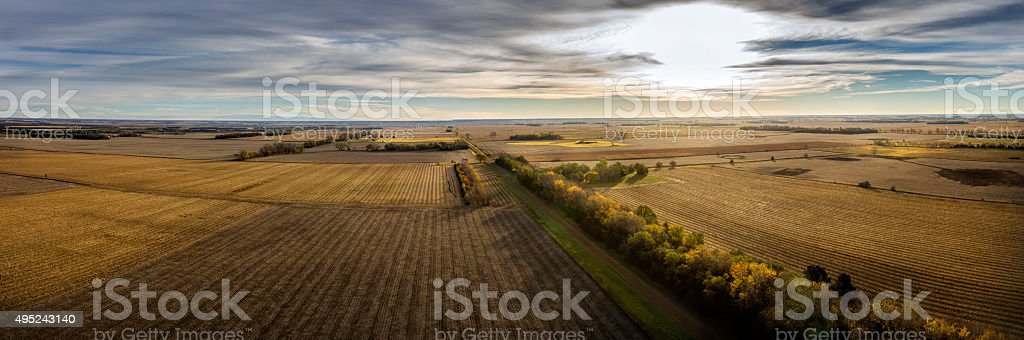 Autumn Crop Land stock photo