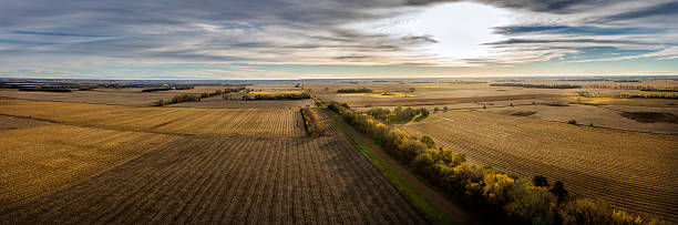 autumn crop land - great plains stock photos and pictures