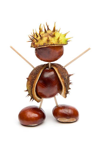 Autumn - Cute little Chestnut Man, Isolated on White stock photo