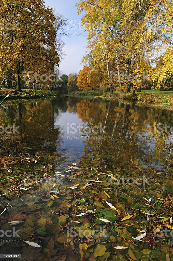 Autumn day in the park. stock photo
