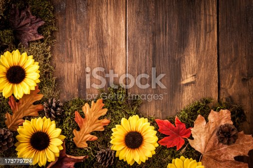 Autumn decoration with leafs