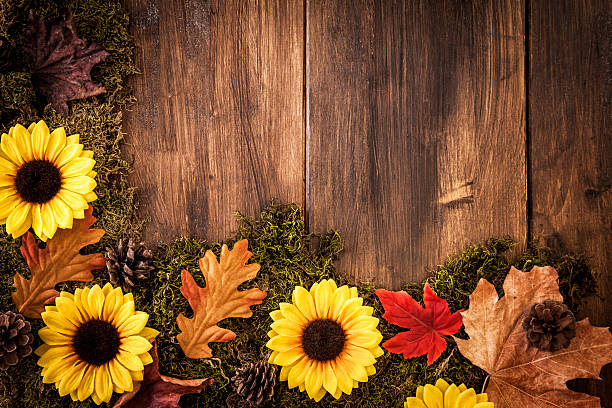 autumn decoration background with leafs - september stock photos and pictures