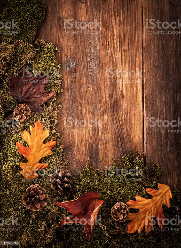 Autumn Decoration Background with Leafs royalty-free stock photo