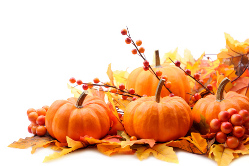 Autumn decoration on white with copy space