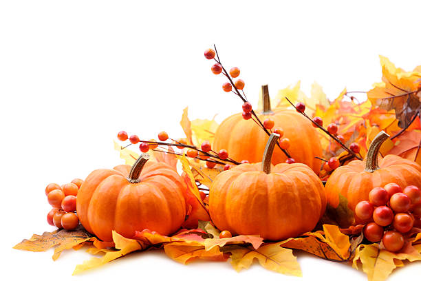 autumn decoration on white with copy space - pumpkin stock photos and pictures