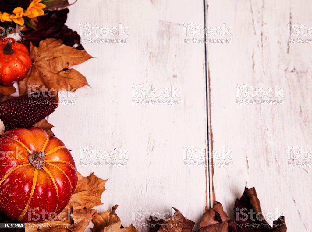 Autumn Decoration royalty-free stock photo