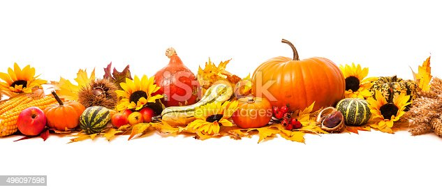 istock Autumn decoration 496097598