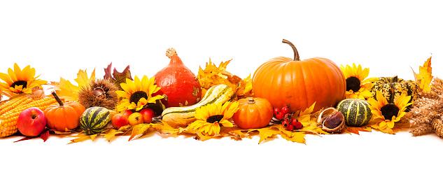 istock Autumn decoration 496097598