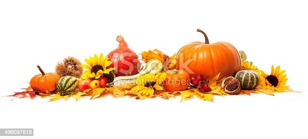 istock Autumn decoration 496097618