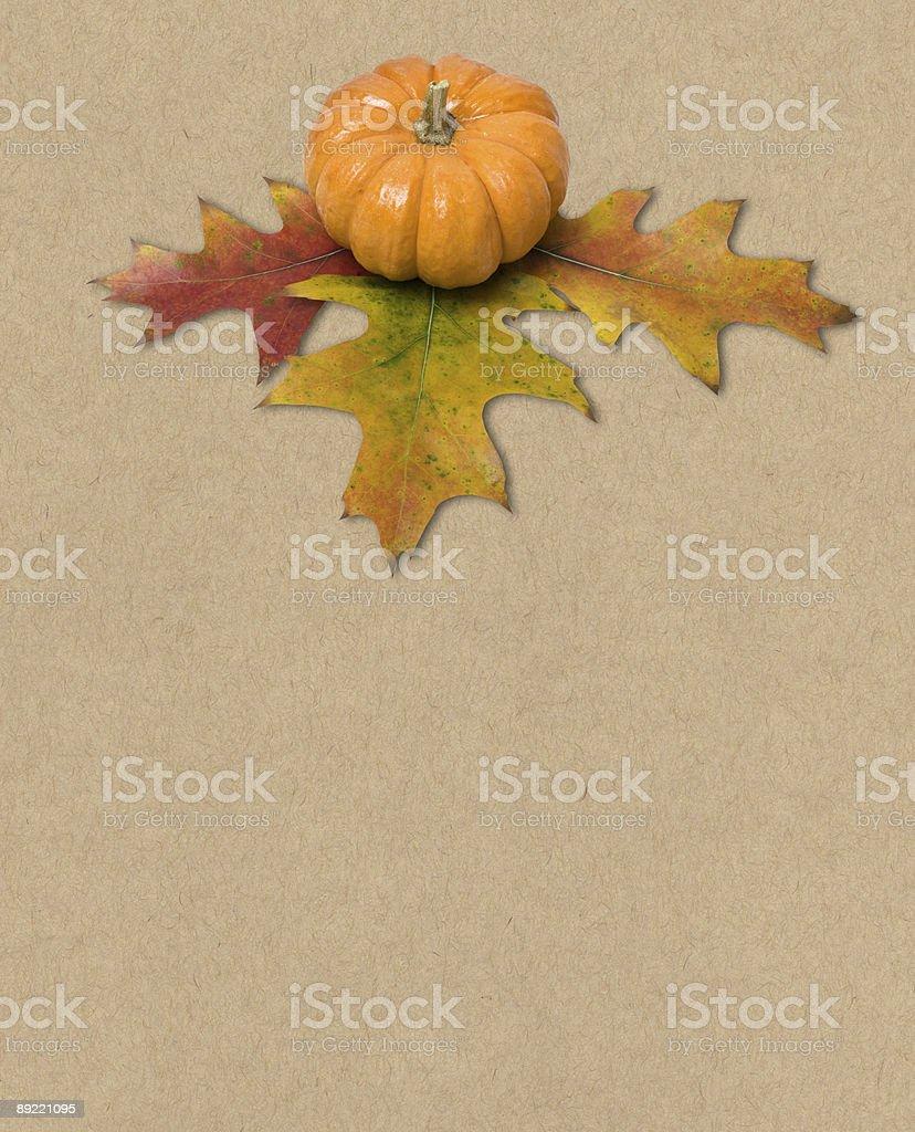 Autumn Decorative Centerpiece royalty-free stock photo