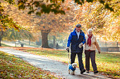Senior couple are walking their dog through a public park in Autumn.