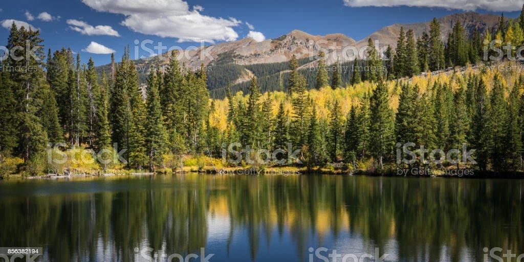 Autumn Dollar stock photo