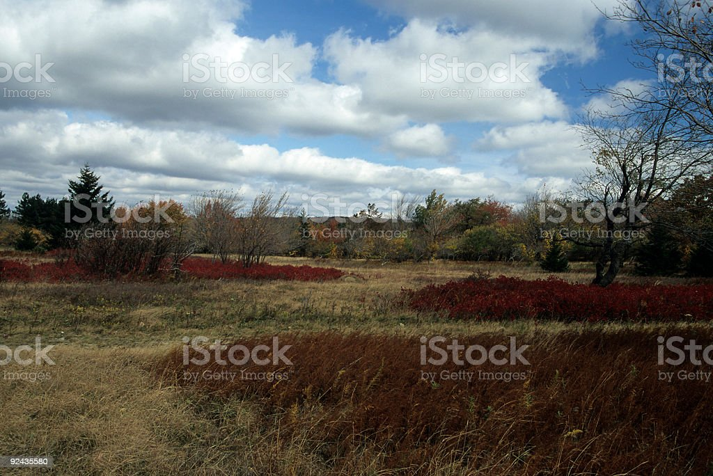 Autumn, Dolly Sods, Monongahela NF, WV stock photo