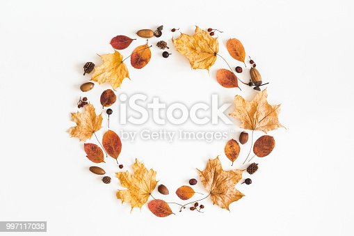 istock Autumn dried leaves, berries, acorns. Flat lay, top view 997117038