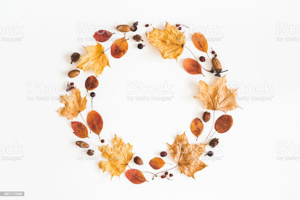 Autumn dried leaves, berries, acorns. Flat lay, top view stock photo
