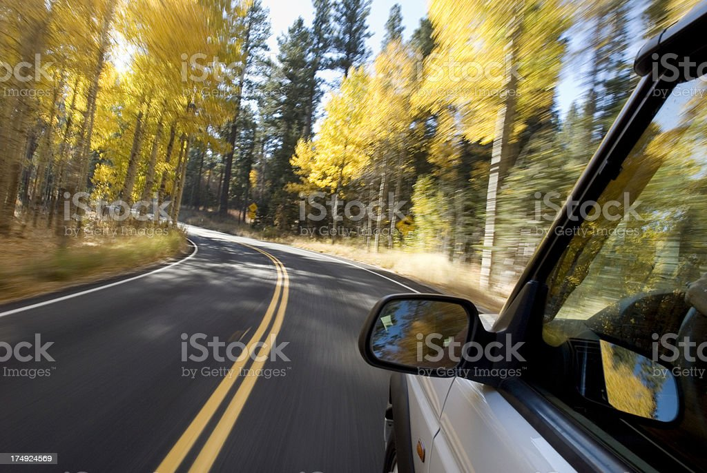 Autumn Drive royalty-free stock photo
