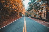 istock Autumn drives in Portland, Oregon 1173694771