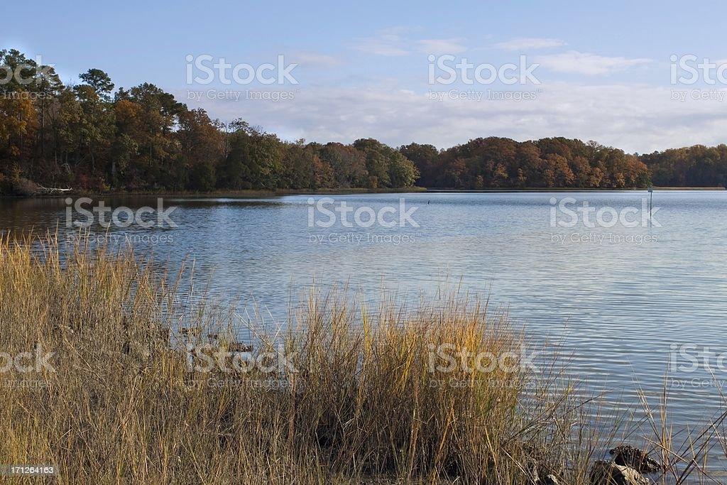 Autumn estuary Scene along the Chesapeake Bay with Trees stock photo