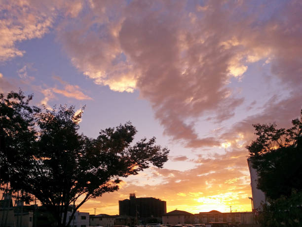 秋の夕暮れ空 ストックフォト