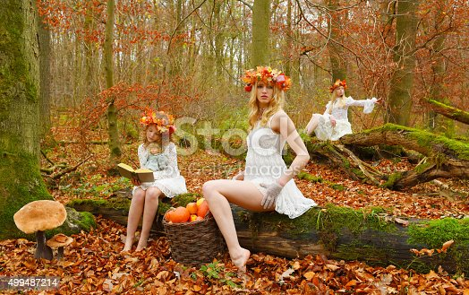 3 fairies sit on fallen trees in an autumn forest with
