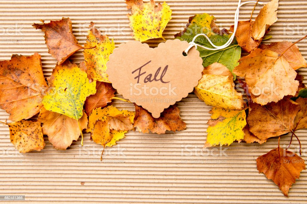 Autumn / Fall - Background royalty-free stock photo