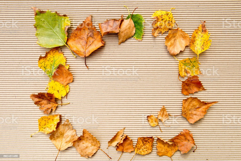 Autumn / Fall - Background royalty-free stock photo