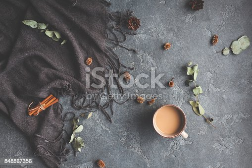 istock Autumn Fall composition on black background. Flat lay, top view 848867356