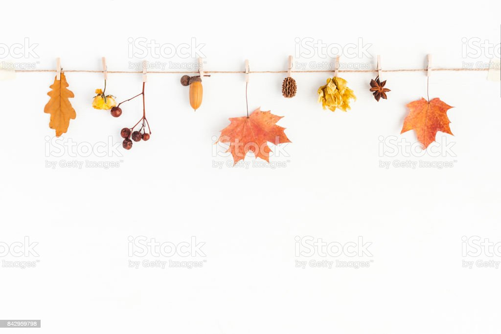 Autumn Fall composition on white background. Flat lay, top view