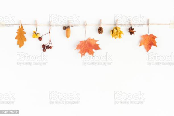 Autumn fall composition on white background flat lay top view picture id842959798?b=1&k=6&m=842959798&s=612x612&h=9ndz5esc0g8r3uzrvk ujwacynwng6sk6uhb 5ogn7u=