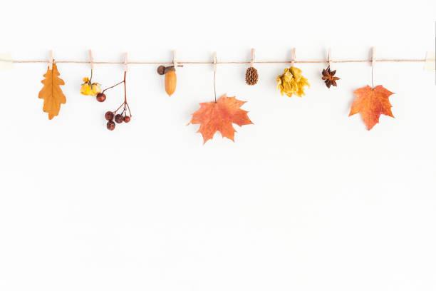 Autumn fall composition on white background flat lay top view picture id842959798?b=1&k=6&m=842959798&s=612x612&w=0&h=xvcms5qvtz wb52cwk mymh2qpzhcq3owrdf7vgkypq=