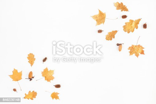 istock Autumn Fall composition on white background. Flat lay, top view 846226148