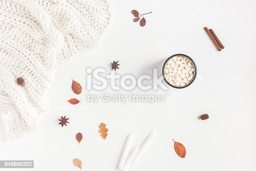 istock Autumn Fall composition on white background. Flat lay, top view 848866352