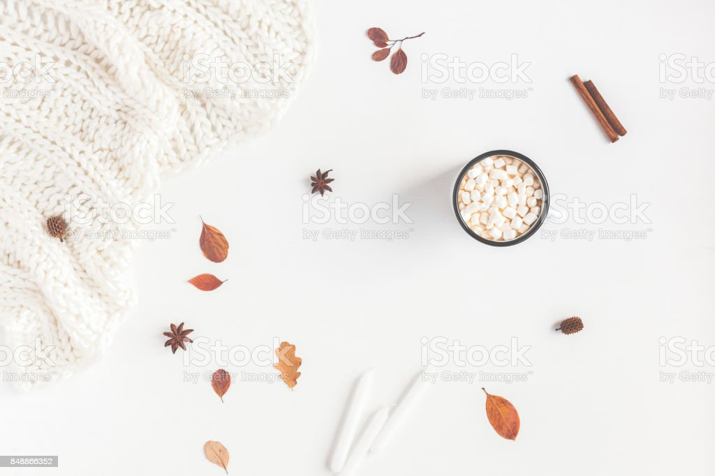 Autumn Fall composition on white background. Flat lay, top view stock photo