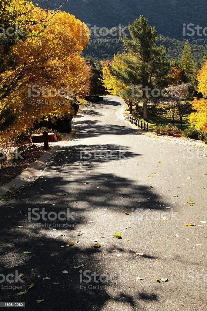Autumn Fall Lane Road stock photo