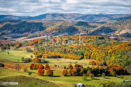 istock Autumn fall orange red colorful trees forest and farm houses buildings on rolling hills aerial above high angle view landscape in Monterey and Blue Grass, Highland County, Virginia 1271789358