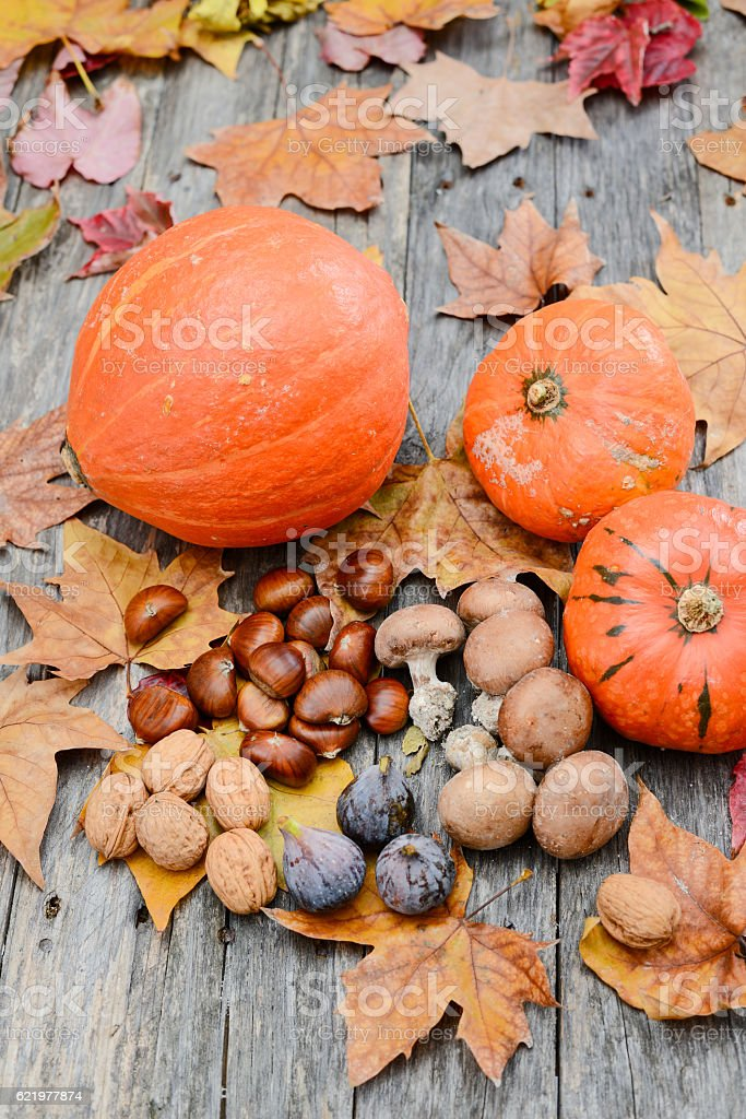 autumn fall season theme with pumpkin and forest vegetables on a old...