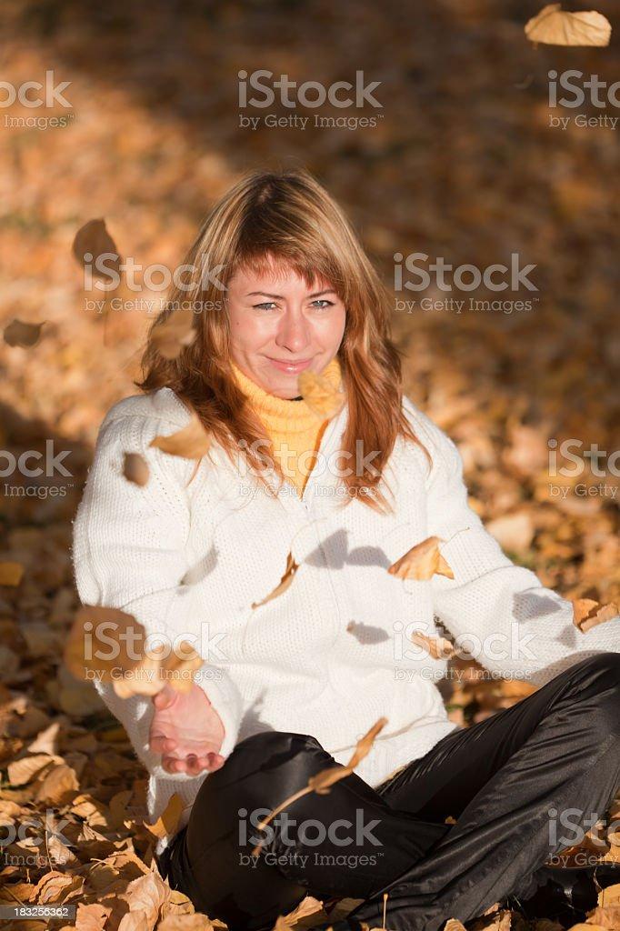 Autumn: Falling Yellow Leafs stock photo