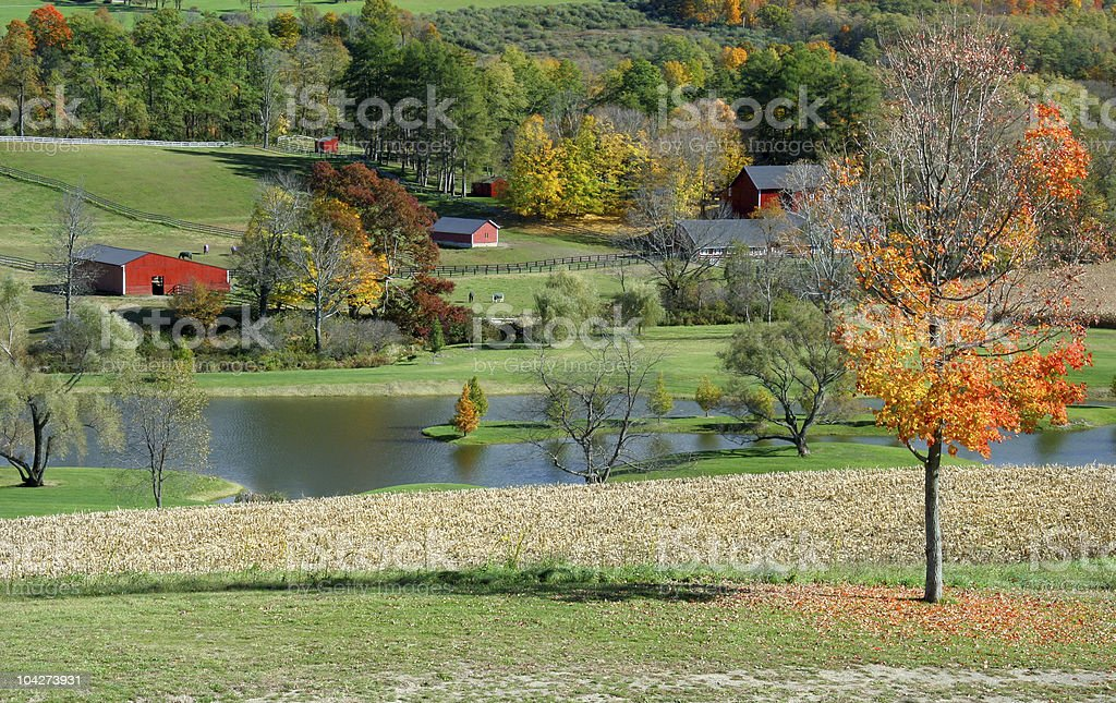 Autumn Farm Scene stock photo
