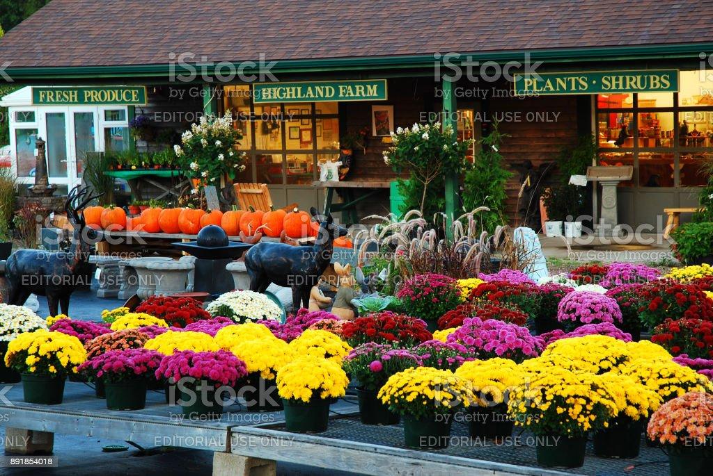 Autumn Farmstand stock photo